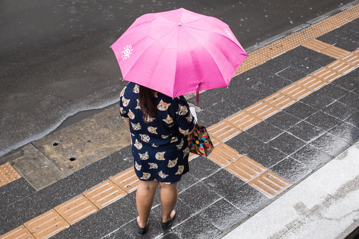 Bangkok umbrella