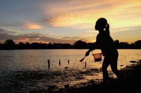 Photo of the Week: Fish Feeding inBangkok