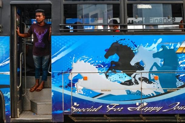 Sri Lanka bus animals