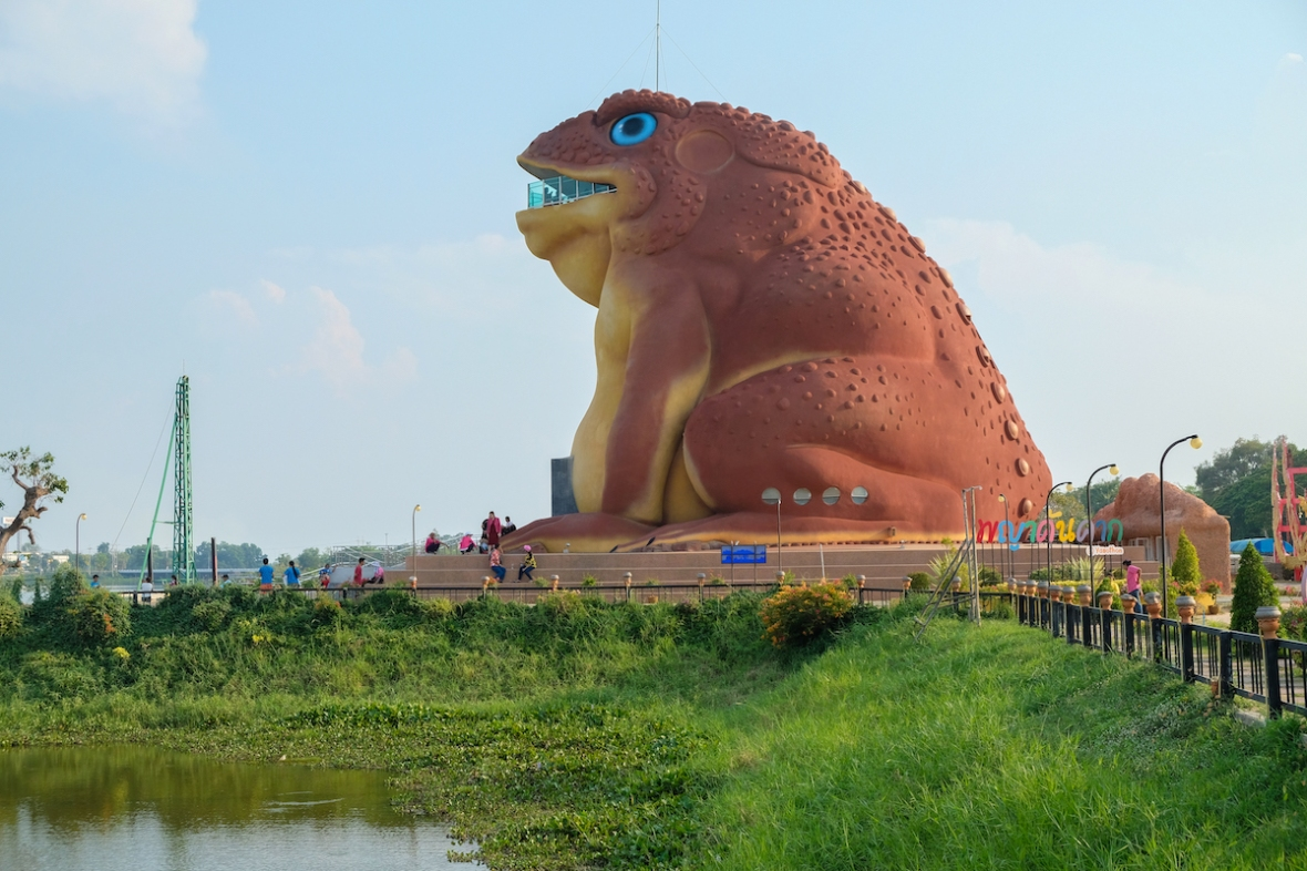 Yasothon frog