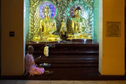 Shwedagon Pagoda Nun