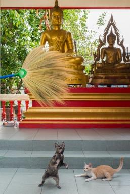 Wat Bang Peng Thai, Bangkok