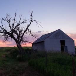 Barn tree sunset